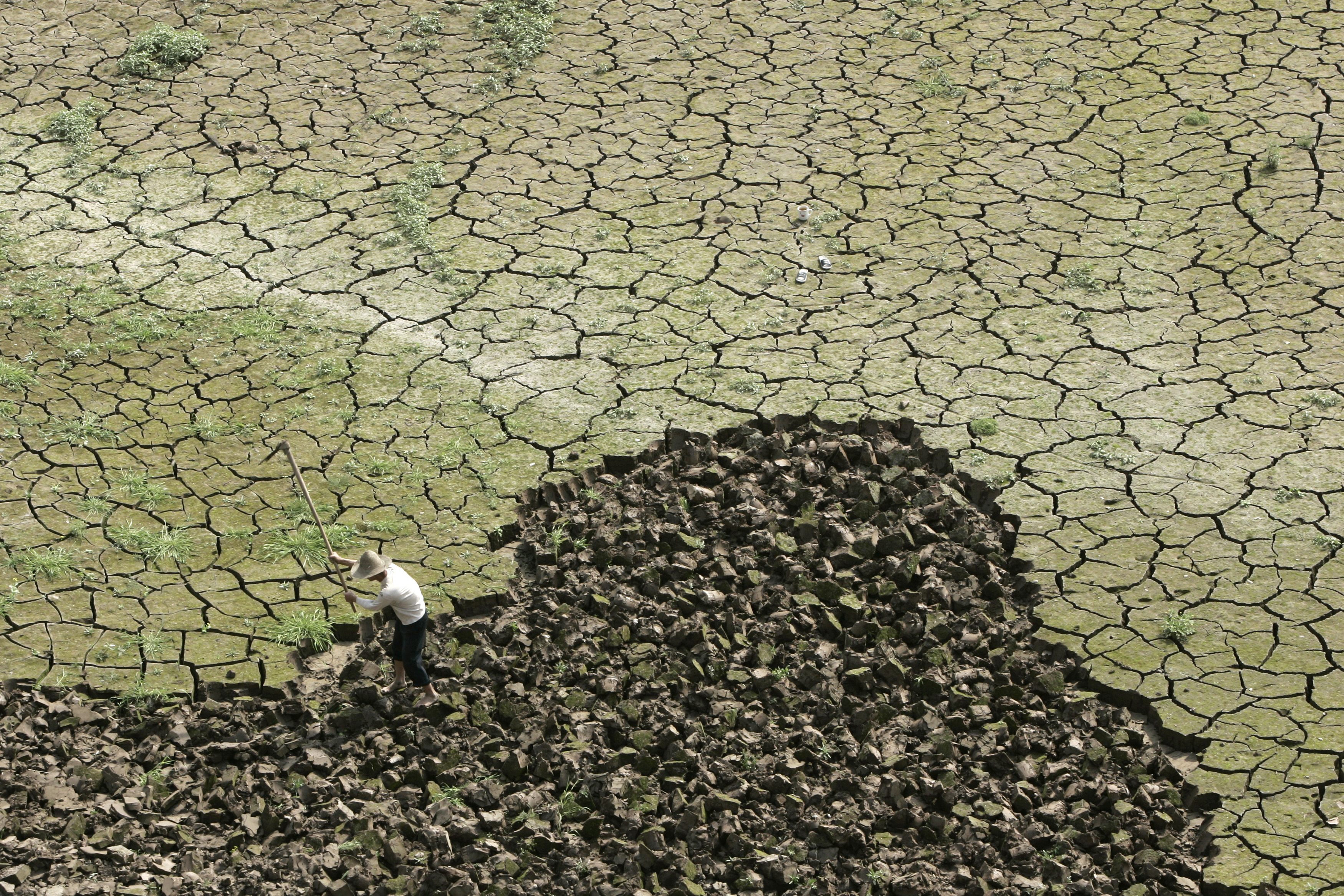 Ecosphera, l'ambientalismo scientifico nero su bianco