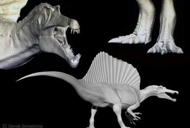 Alcuni modelli di spinosauro scolpiti da Davide Bonadonna
